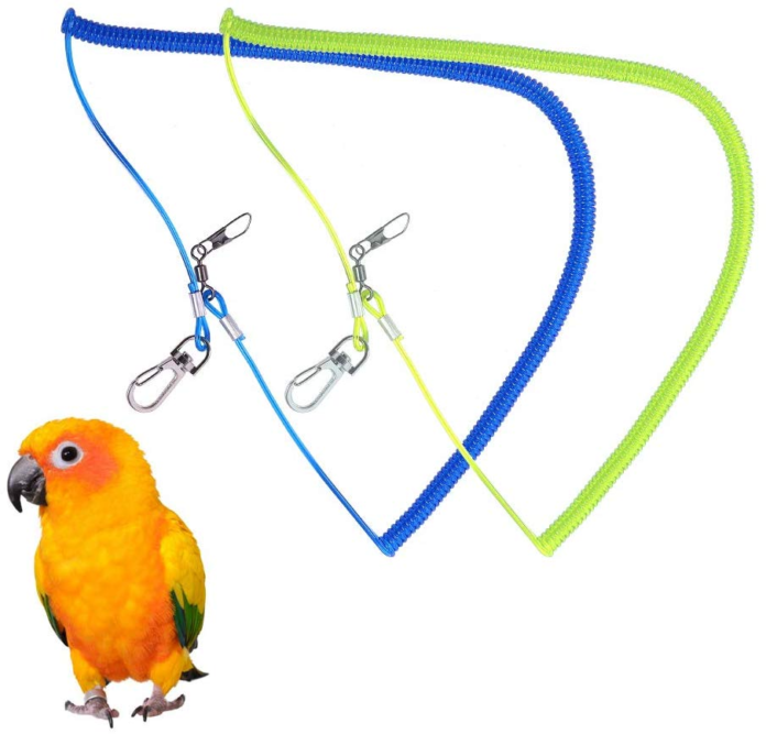 Best parrot flight harness
